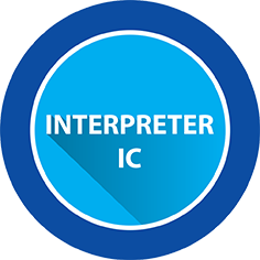 OBDII Interpreter IC